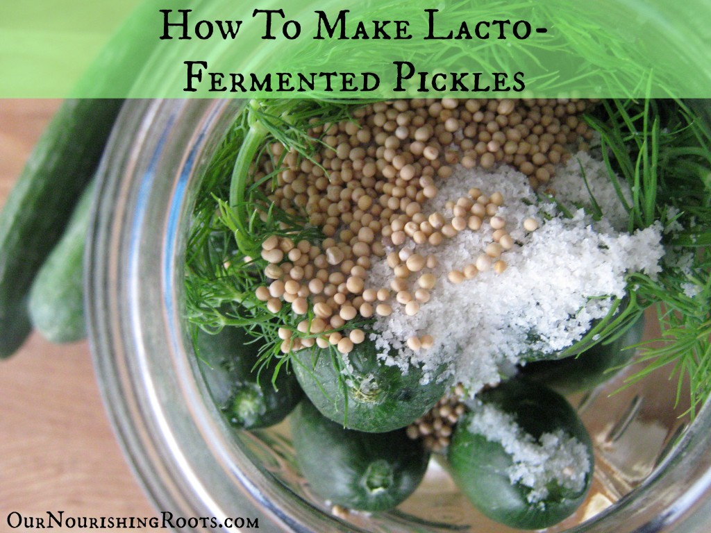 Lacto-Fermented Pickles | OUR NOURISHING ROOTS #pickles #cultured #ferments #realfood