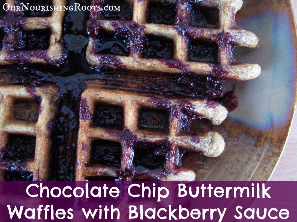 chocolate chip waffles blackberry sauce